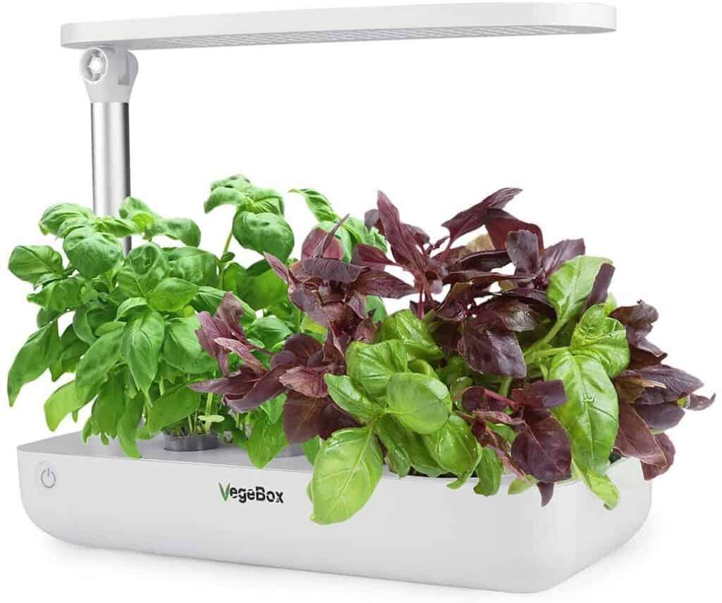 Vegebox Hydroponic Herb Garden