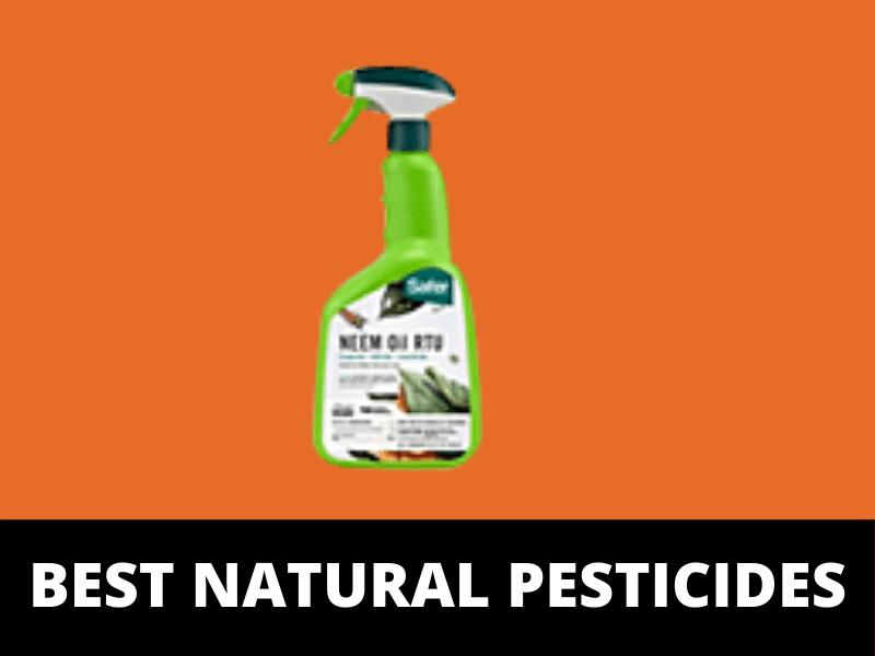 Best pesticides