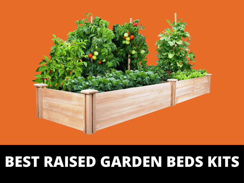Best raised garden beds