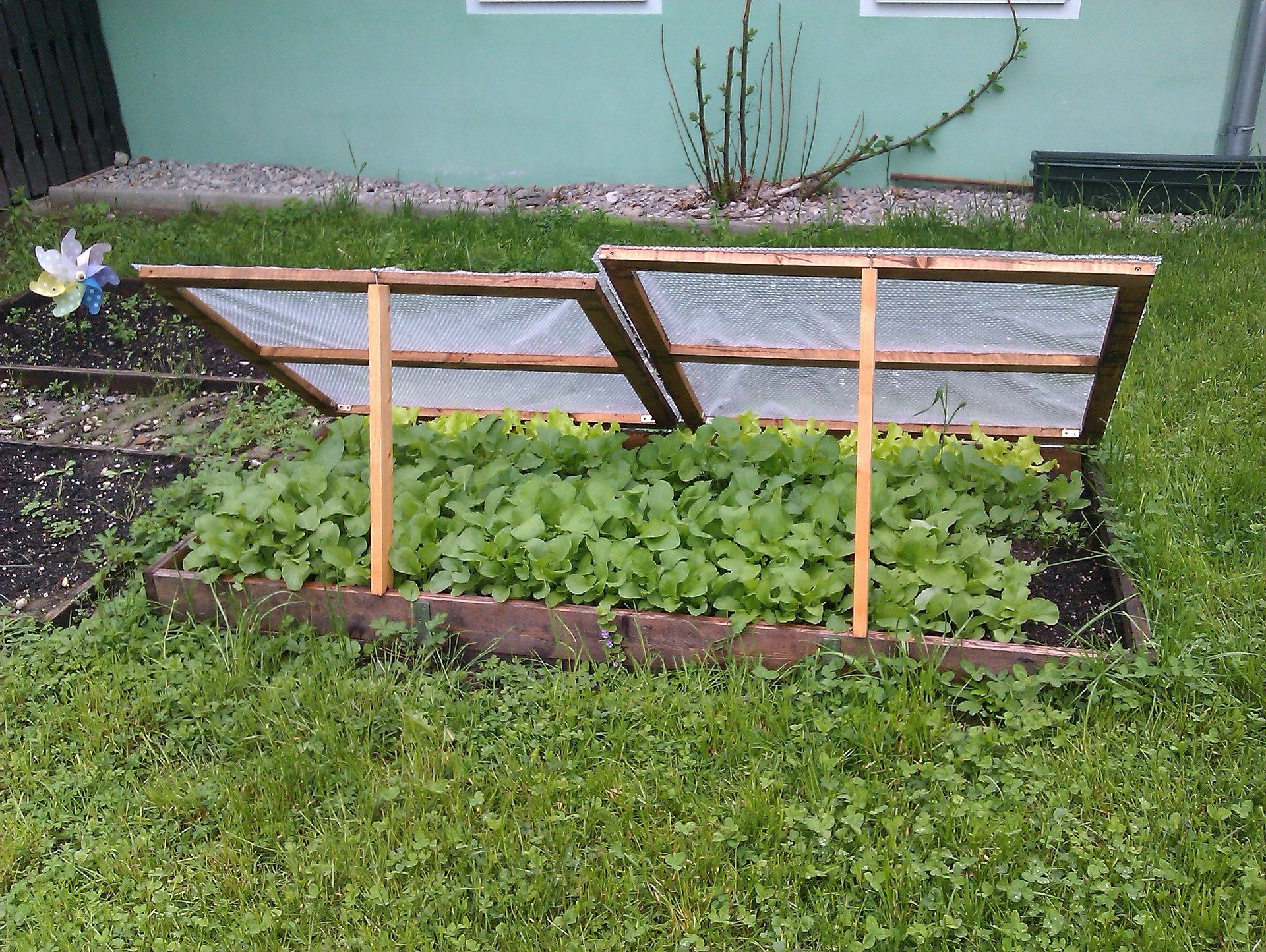 Cold frame to protect from frost