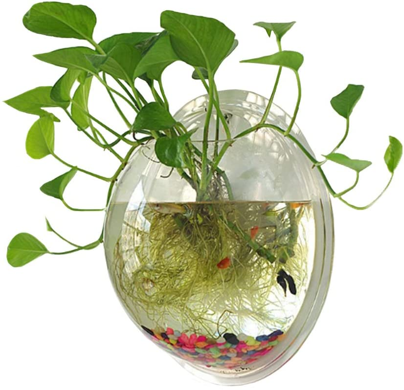 Sweetsea Wall Mounted Fish Bowl
